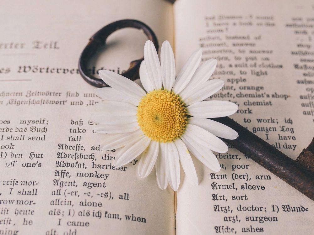 nauka-jezyka-angielskiego